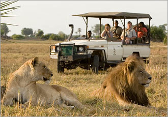 Okavango offers extraordinary viewing of wildlife