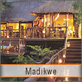 Exquisite Madikwe Game Reserve